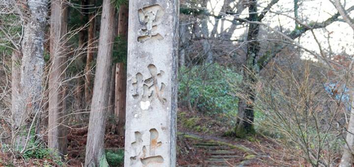 tanesato_joshi