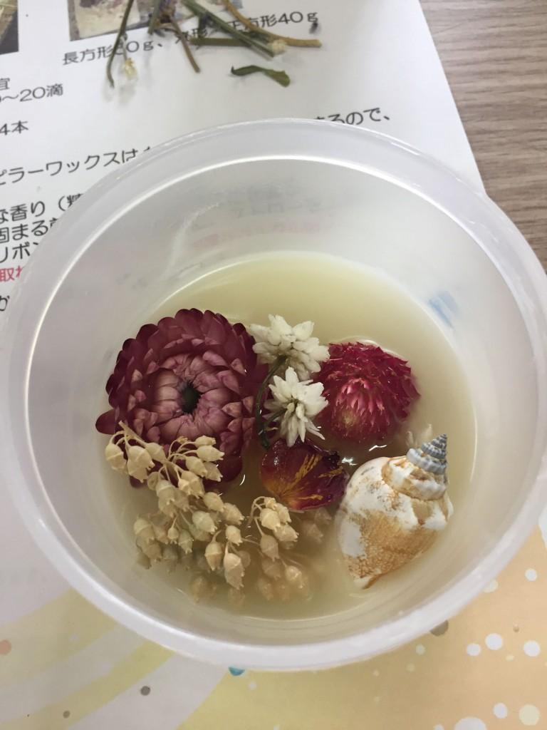 chyokoto-(2)